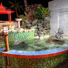 Ornamental Fishpond Image